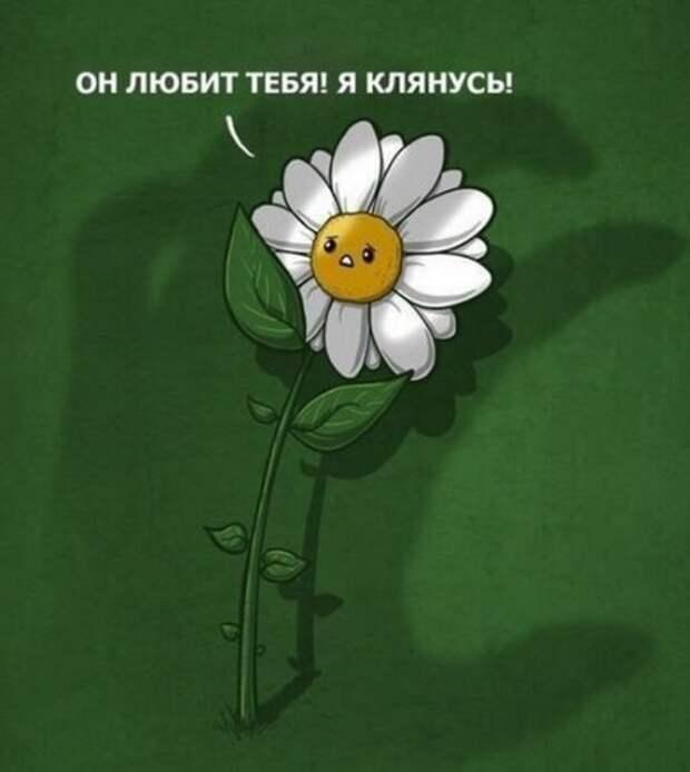 1473252035_1473206118_prikoly-na-sredu-5