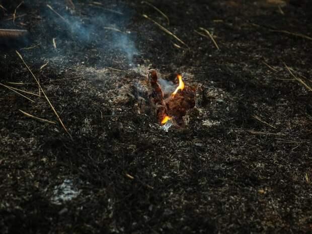 В Забайкалье за сутки зафиксировано 17 ландшафтных пожаров