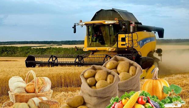 Буцаев назвал сельское хозяйство драйвером экономического роста Подмосковья