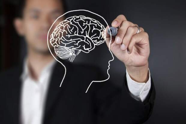 Cara untuk Membuat Otak Lebih Sehat