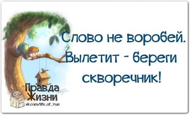 1403119365_frazki-14 (604x367, 136Kb)