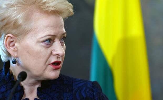 Президент Литвы: Россия несет угрозу региону