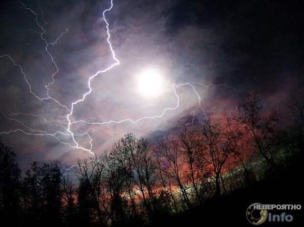 Шаровая молния обладает разумом и повадками дикого зверя
