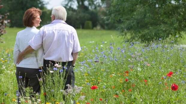 Кто может выйти на пенсию по старым правилам: в ПФР дали ответ