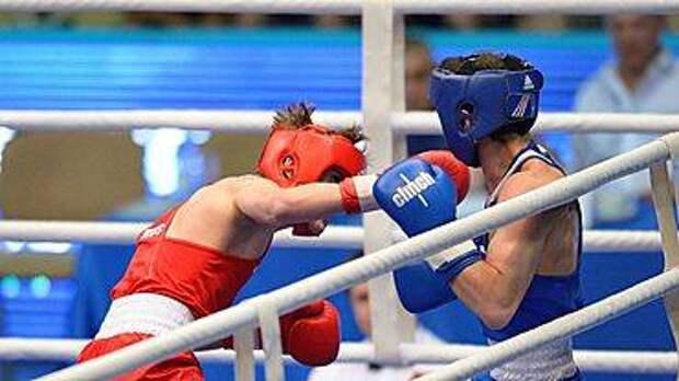 Бей в кость. Что за турнир по боксу пройдёт в Барнауле и кто из звёзд на него приедет