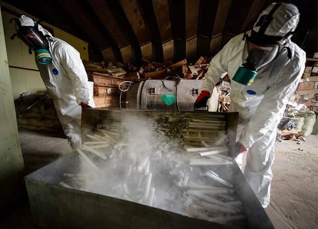 В России началось тестирование системы учета опасных отходов