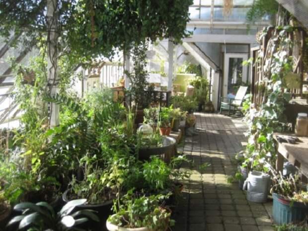 Органическое земледелие, пермакультура: зимний сад