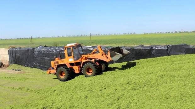 В Республике Крым стартовала уборочная компания по заготовке грубых и сочных кормов для   сельскохозяйственных животных - Андрей Рюмшин