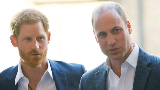 Принцы Гарри и Уильям отказались вместе выступать с речью на открытии памятника матери
