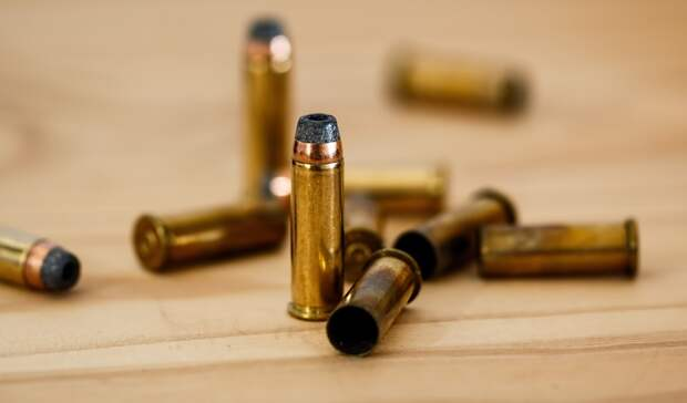 ВГосдуме рассмотрят инициативы поужесточению наказания занебрежное хранение оружия