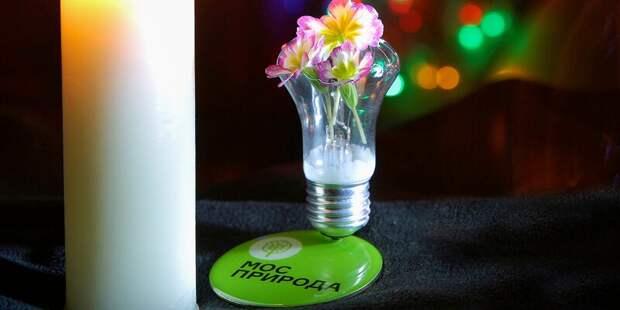 В Куркине пройдет экологический марафон