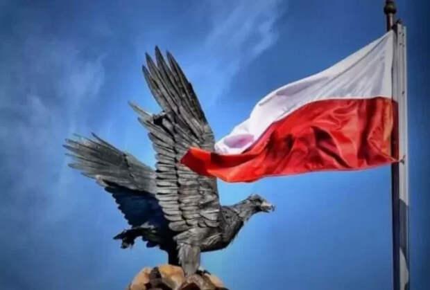 Вот это поворот: член совета при президенте Польши «размазал» русофобов...