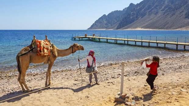«Аэрофлот» сократит число рейсов в Турцию до двух в неделю