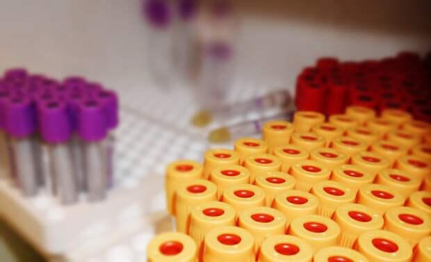 Лаборатория, пробирки