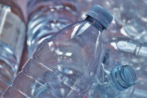 Пластиковые крышки примут на переработку в парке «Кузьминки-Люблино»