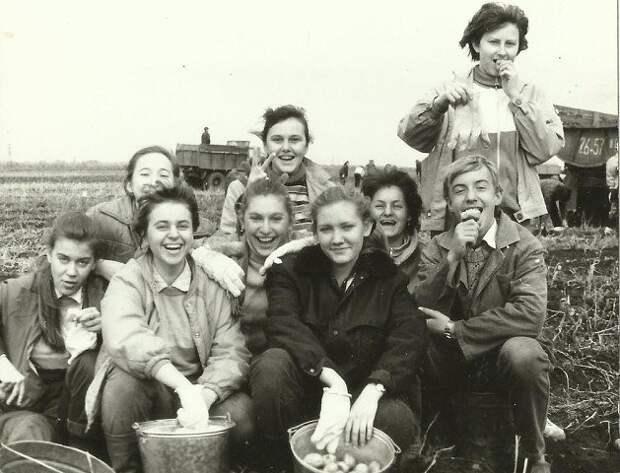 На картошку Советская традиция посылать студентов «на картошку» забыта. А вот воспоминания об этих поездках живы СССР, быт, воспоминания, ностальгия, фото