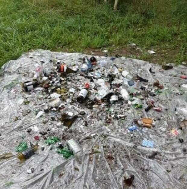 Лесопарковую зону на Дмитровском приведут в порядок