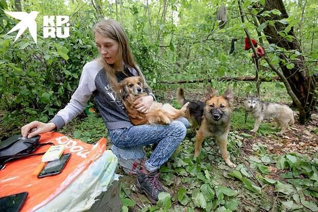 Сейчас в семье осталось три собаки. Еще две сгорели во время пожара Фото: Андрей АБРАМОВ