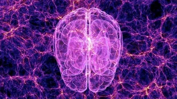 Ученые нашли сходство между Вселенной и головным мозгом человека