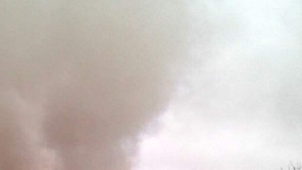 Челябинские спасатели ликвидировали возгорание возле здания зоопарка