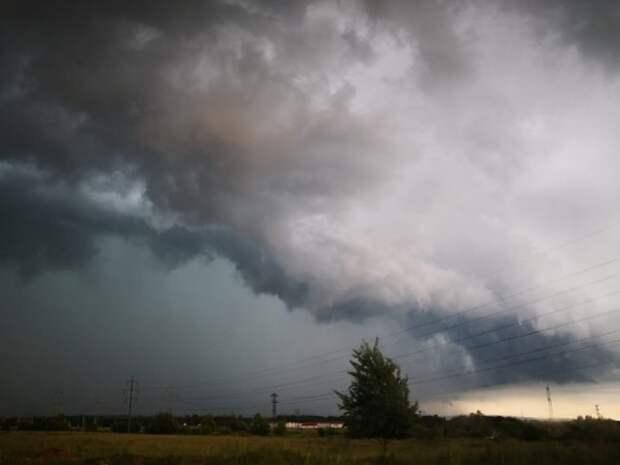 Нижний Новгород накрыла страшная буря: повалены десятки деревьев, с домов сорваны крыши
