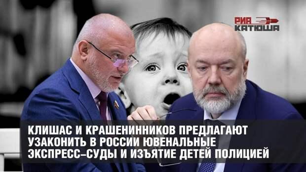 Ювеналы - Клишас и Крашенинников опять взялись за идею ввести ювенальные экспресс-суды и изъятие детей полицией