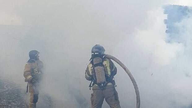 Мощный пожар потушили возле челябинского зоопарка