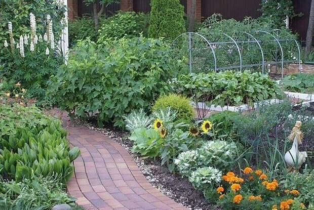 37 хитростей для садоводов и огородников.
