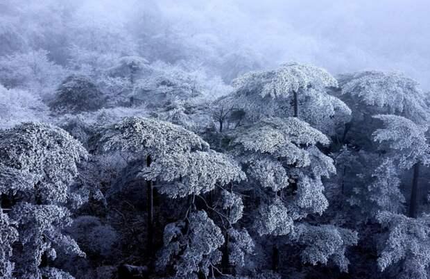 Заснеженные горы Хуаншань