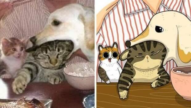 22 забавных кото-фото из сети, которые превратили в мультяшные иллюстрации
