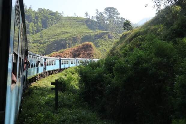 Пять самых красивых и интересных железных дорог Шри-Ланки на красочных фото