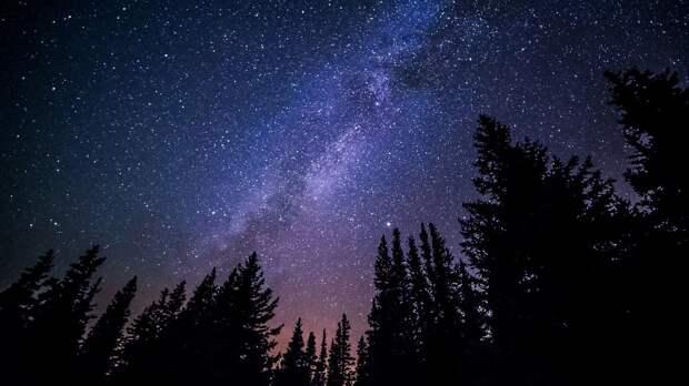 В ночь на 13 августа крымчане смогут увидеть звездопад