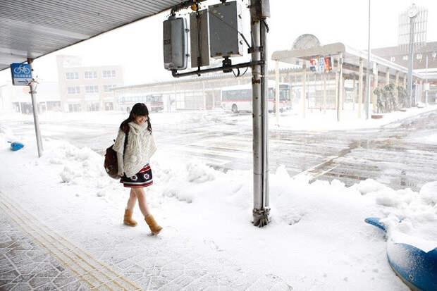 20 фактов о Японии, которых вы еще не знали