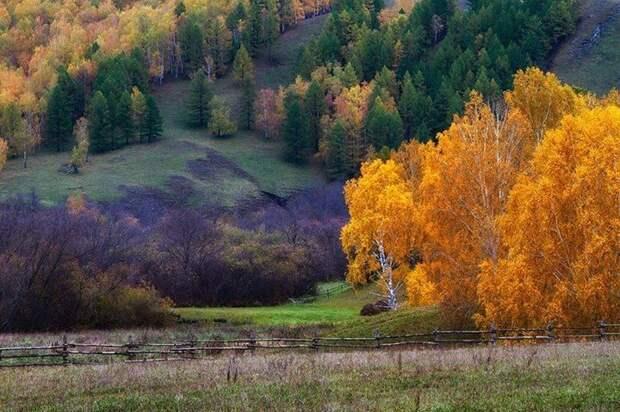 Красоты России (#402)