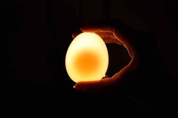 Что будет с яйцом после двух суток в уксусе