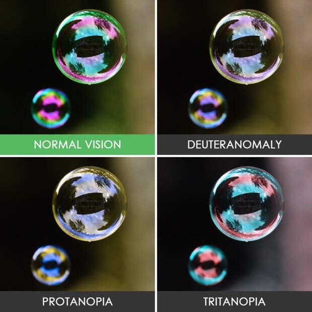 41. Мыльные пузыри  дальтонизм, люди, мир