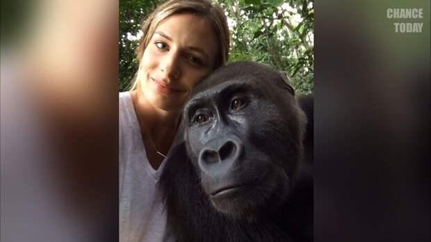 Самые невероятные и трогательные реакции животных, увидевших человека после разлуки