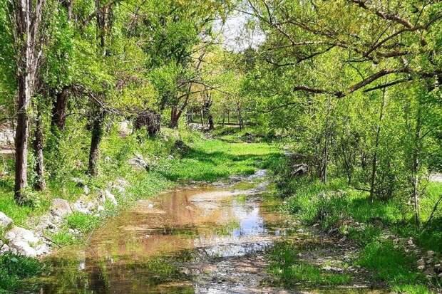 Власти Крыма не будут еженедельно отчитываться по ситуации с водоснабжением