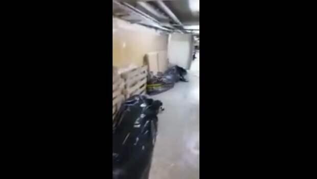 Нагрузка возросла: Чиновники объяснили скопление трупов в подвалах госпиталя в Барнауле