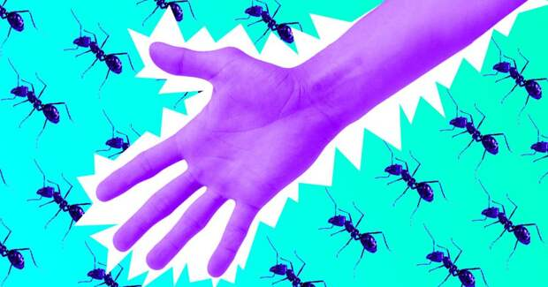 Вот зачем нужны мурашки. От них волосы растут лучше