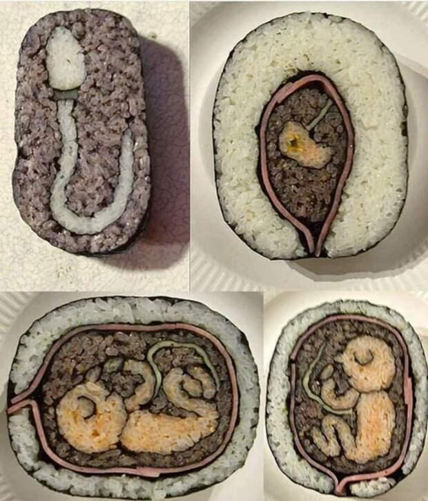 Анатомические суши