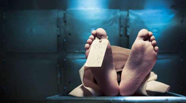 8 теорий ученых, которые пытаются разгадать природу смерти