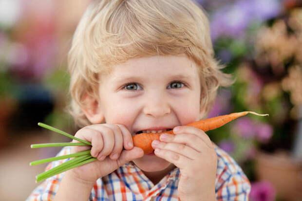 Морковка может быть и разноцветной, но оранжевая все равно вкуснее!