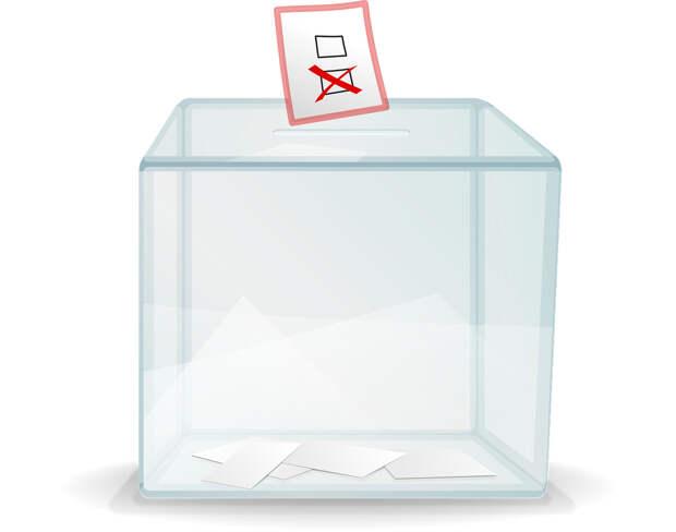 Эксперты Крыма и Севастополя прогнозируют явку на выборах региональных парламентов и оценивают партийные шансы