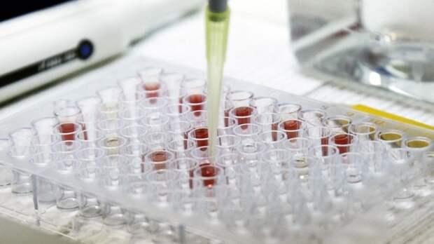 Учёный оценил вероятность создания лекарства от рака на основе COVID-19