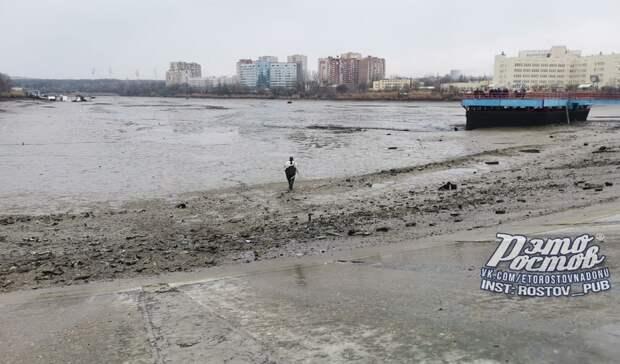 Ростовчане заявили омассовой гибели рыбы из-за прорыва дамбы