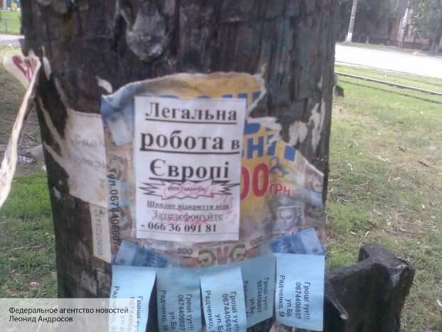 Безпалько назвал причины, почему Киев запретил заробитчанам выезжать в Европу