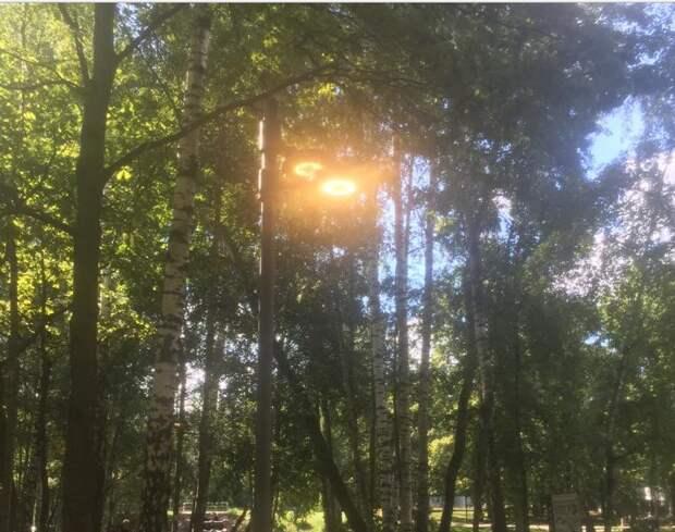 Фонарь отремонтировали в парке на Угличской по просьбе жителя