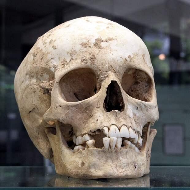 10 жутких археологических открытий
