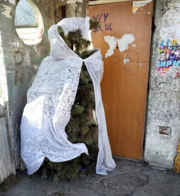 Novate.ru сообщает: если вы еще не вынесли елки, пришла пора! | Фото: kaifolog.ru.